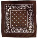 Brown Paisley Bandana