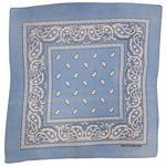 Light Blue Paisley Bandana
